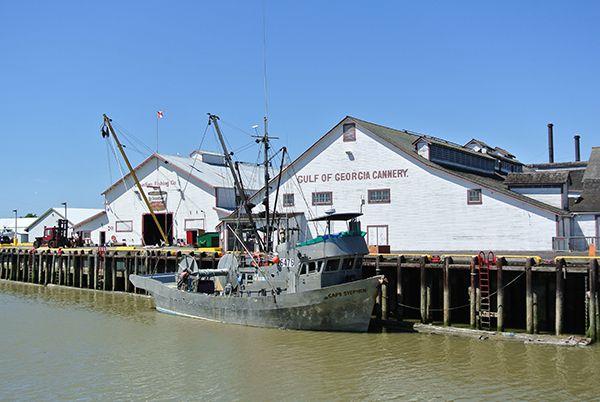 Gulf-Cannery-4