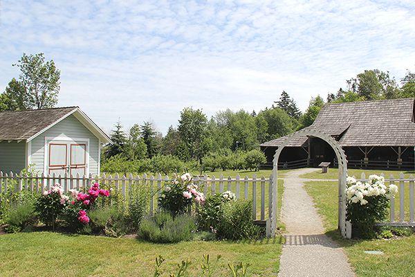 Surrey-Stewart-Farm-2