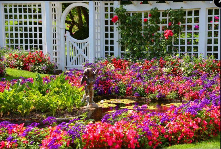 Butchart-Gardens-2