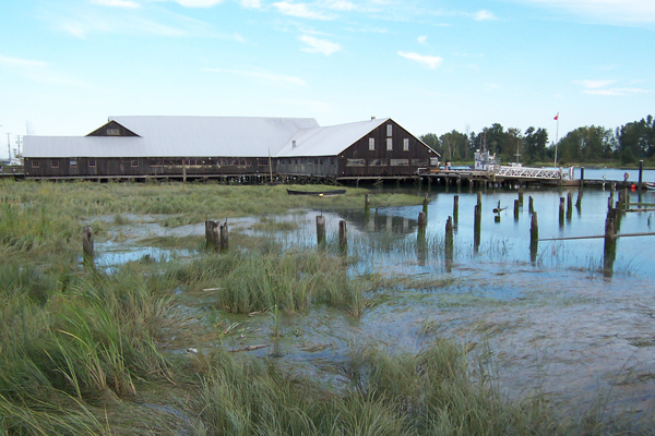 shipyard-building-and-marsh-environment