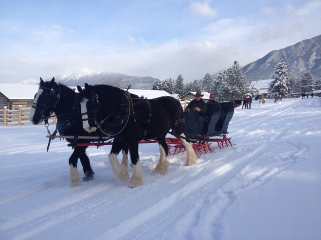 Sleigh-ride-2-Jan-2015