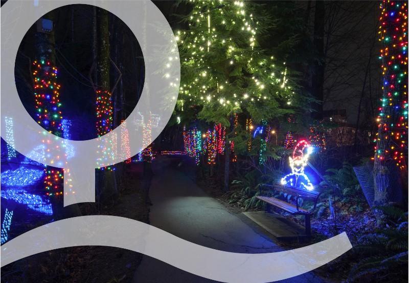Lights-at-Lafarge-–-Trail