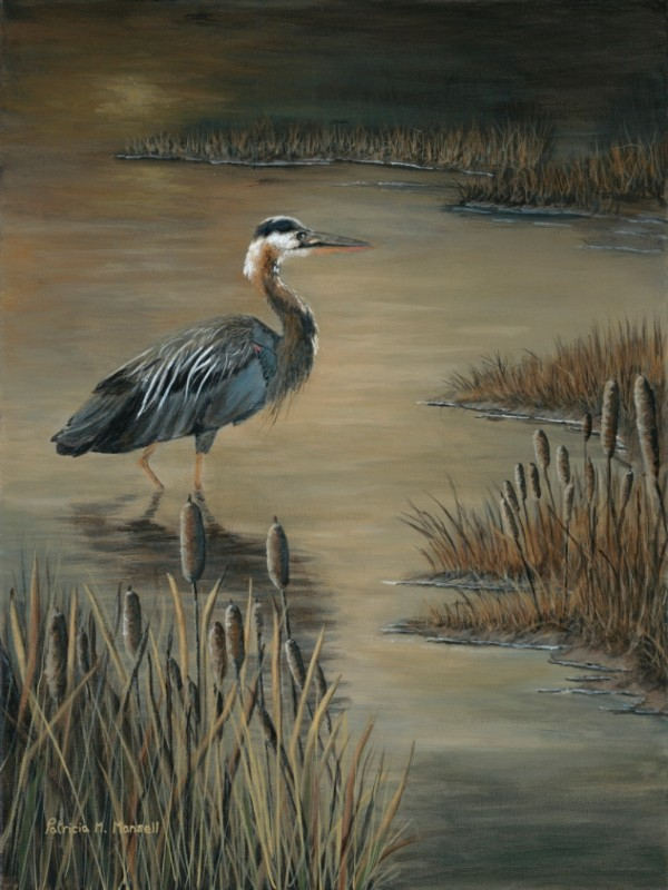 50830_MARSHLANDS_WADDER8x10.6