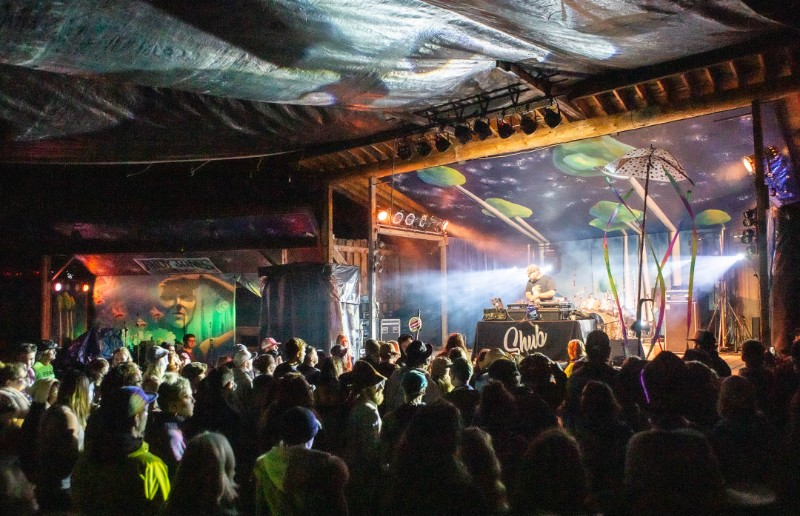DJ-Shub-crowd