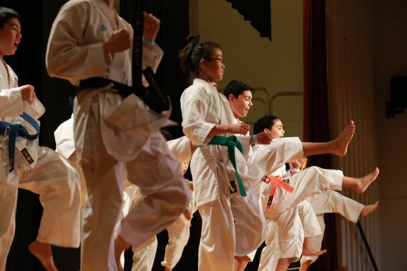 Nikkei_karate