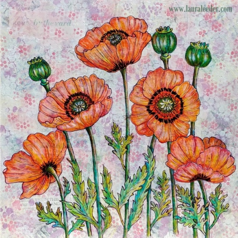 Oct-9-2020-Orange-Crush-Poppies-LauraLeeder850px