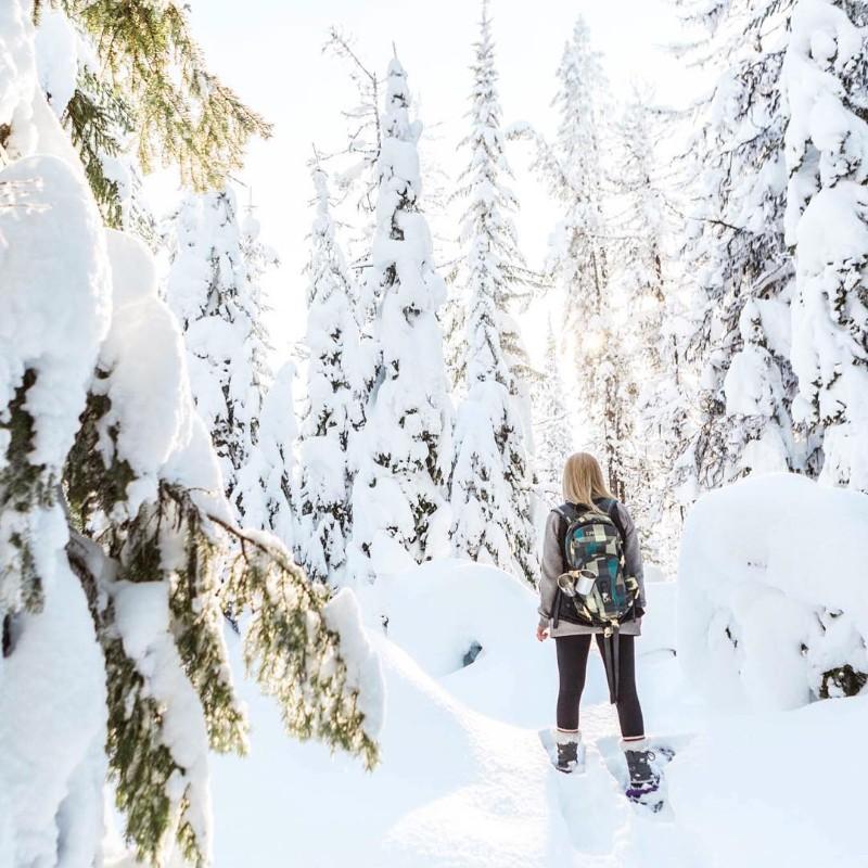 SnowshoeSilverStar_roycesihlis