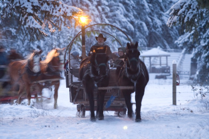 Caravan-winter-slegh-ride-2-1